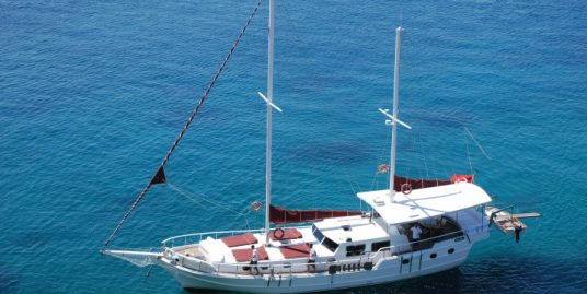 Blue Diamond / 20 m 4 cabin Gulet / model 2013