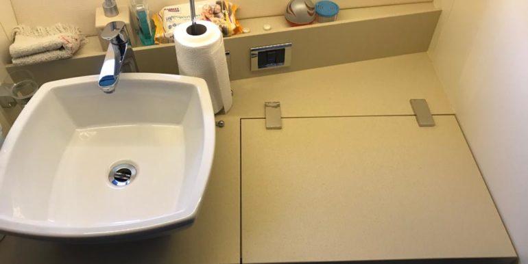 Fairline Squadron 48- Toilet & Shower